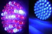 Acne, Acne Scars & Anti-Aging 2 LED Light Therapy Bulbs